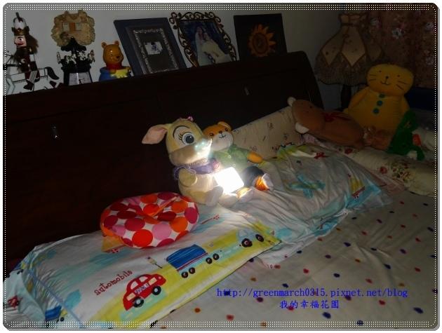 P9080133 (620x465).jpg