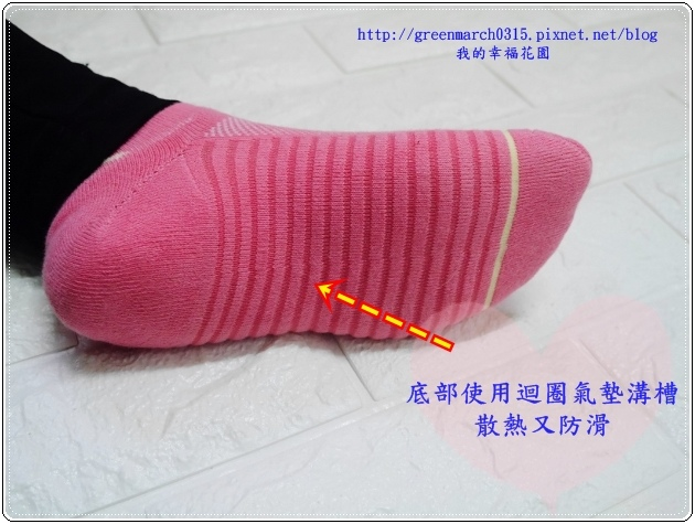 P9210381 (620x465).jpg