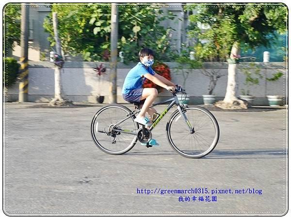 P9430667 (620x465).jpg