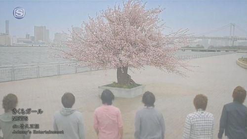 (PV) NEWS - Sakura girl.jpg