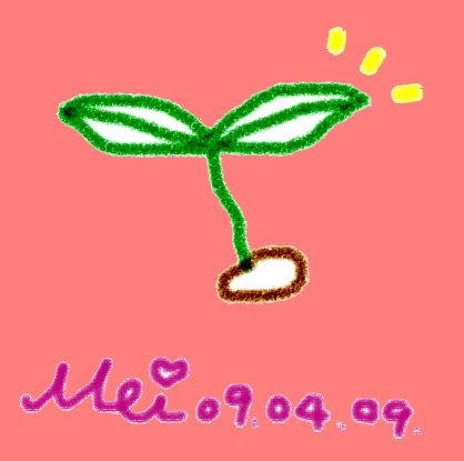 豆芽5.jpg