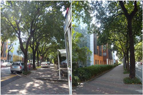 深圳街頭 2