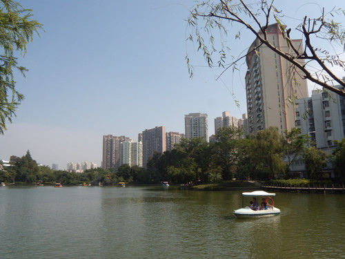 深圳公園 9