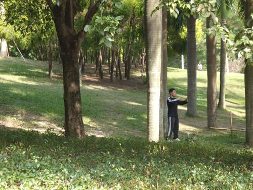 深圳公園 18
