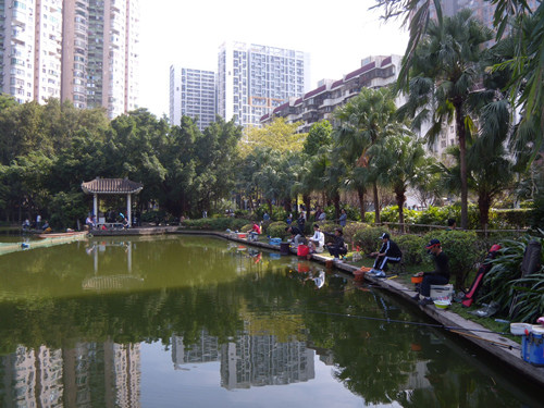 深圳公園 16