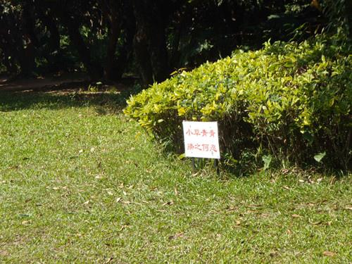 深圳公園23