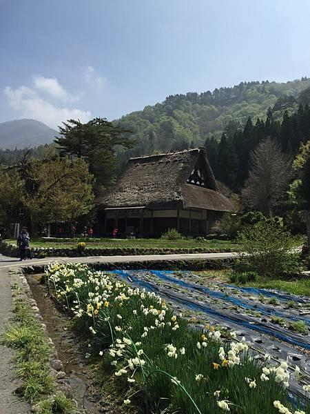 2016春-日本黑部立山之旅