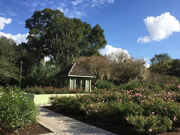 2016初-奧蘭多-哈利花園