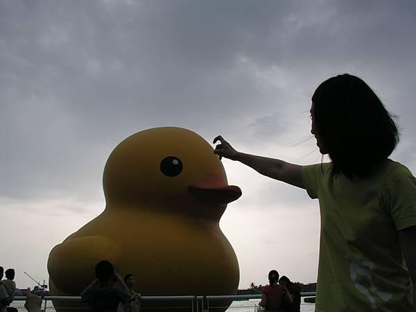 黃色小鴨 007