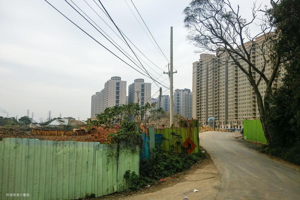 新北市牡丹心樟腦寮步道20160222-110544