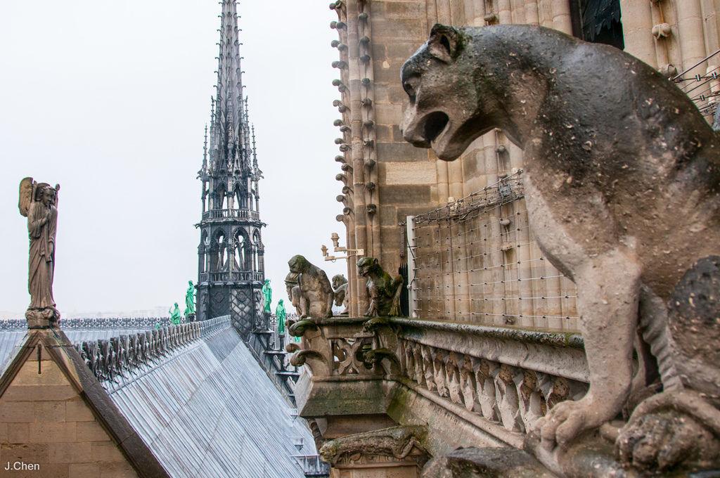 巴黎聖母院-7971