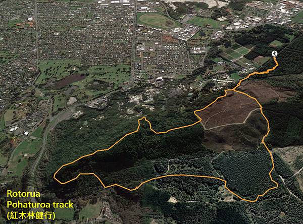 Rotorua walk