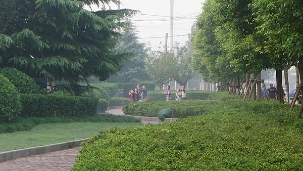 公園練太極2.JPG