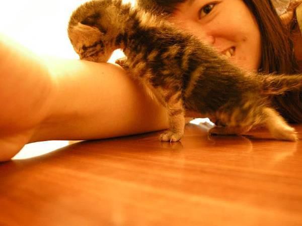 2011/09/01跟美女姊姊討ㄋㄟㄋㄟ的機會我是絕對不會放過的~口享!!!!!<<by Vicky>>