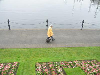散步的路人跟狗