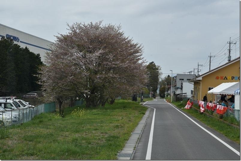 DSC_8706