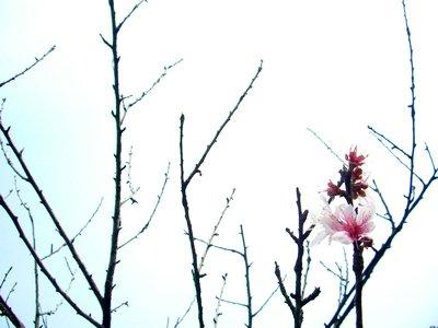 blogphoto_03.jpg