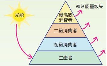 能量金字塔