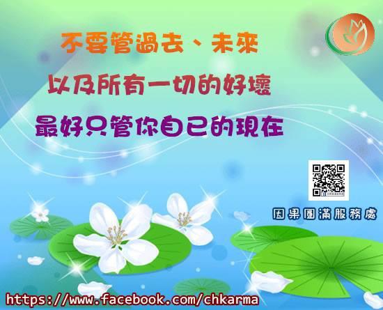 12341441_542669442553454_248420466829648175_n