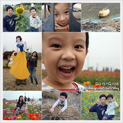 20131208嘉義花海節2