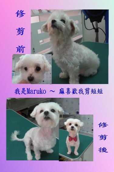 Maruko.jpg