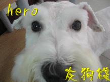 hero圖示.jpg