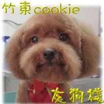 竹東cookie圖示.jpg