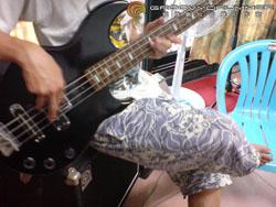 bass_strings16