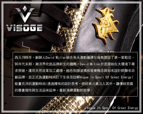 VISOGE_story.jpg