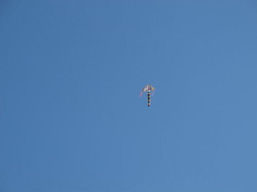 風箏.jpg