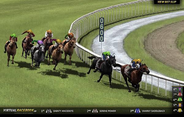 RaceScreen-Example.jpg