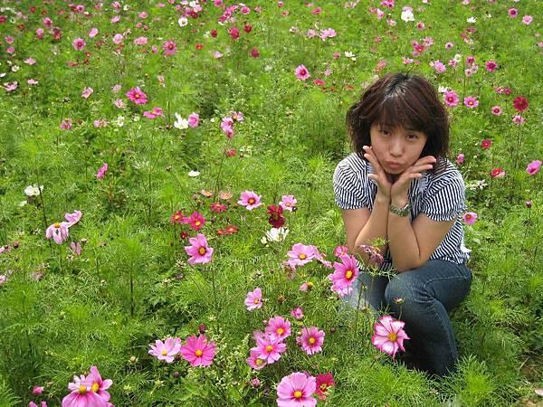 大湖採草莓_02.JPG