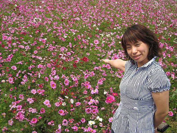 大湖採草莓_18.JPG