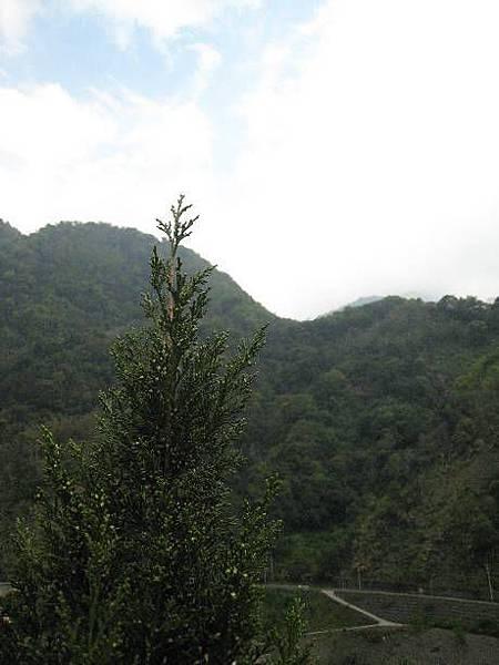 東埔溫泉1.JPG