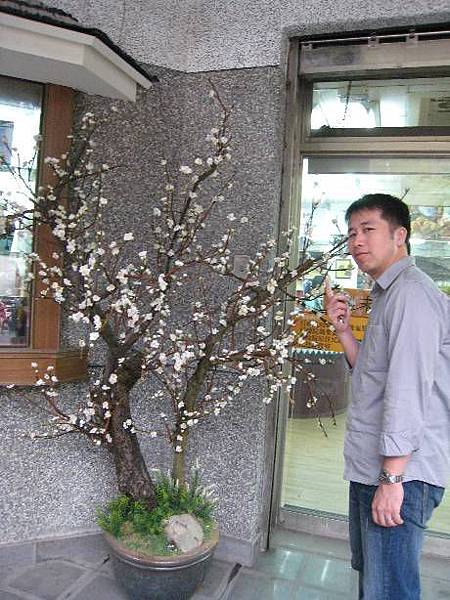 梅子酒庄6.JPG