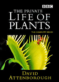 The Private Life of Plants.jpg