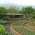 農場5.jpg