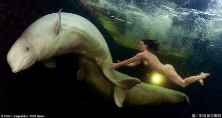 女科學家與白鯨在水中裸舞.jpg