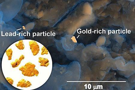 真的是黃金! 專家:人類排泄物含可開採貴金屬