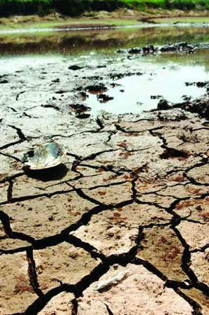排碳量不減 未來30年地球多處將大旱.jpg
