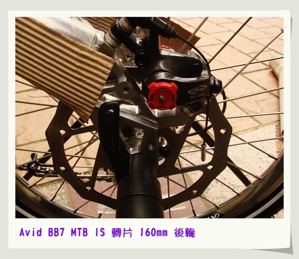 nEO_IMG_DSC09314.jpg