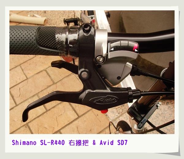 nEO_IMG_DSC09317.jpg