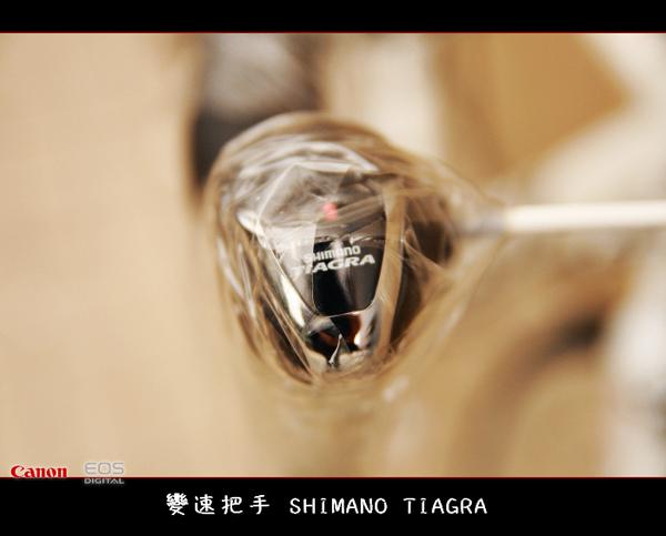 nEO_IMG__MG_5581_縮小大小.jpg