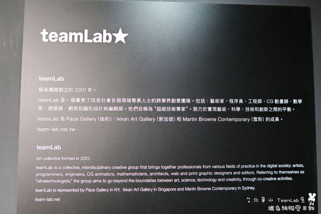 台北華山teamLab (6).jpg