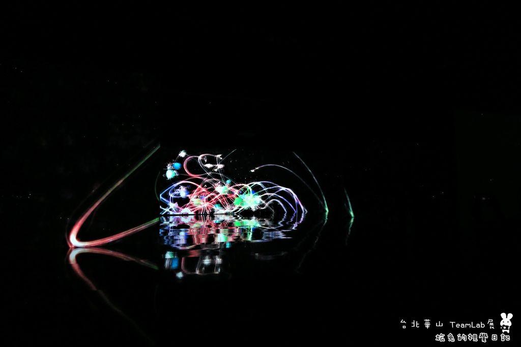 台北華山teamLab (19).jpg