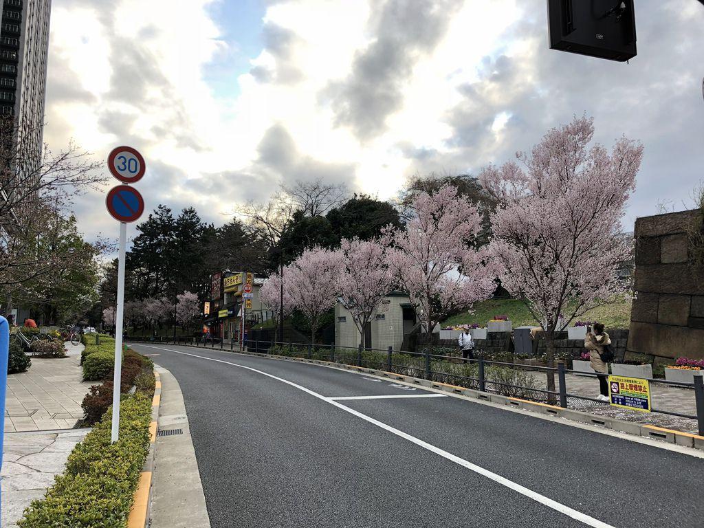 日本自由行 (14).jpg