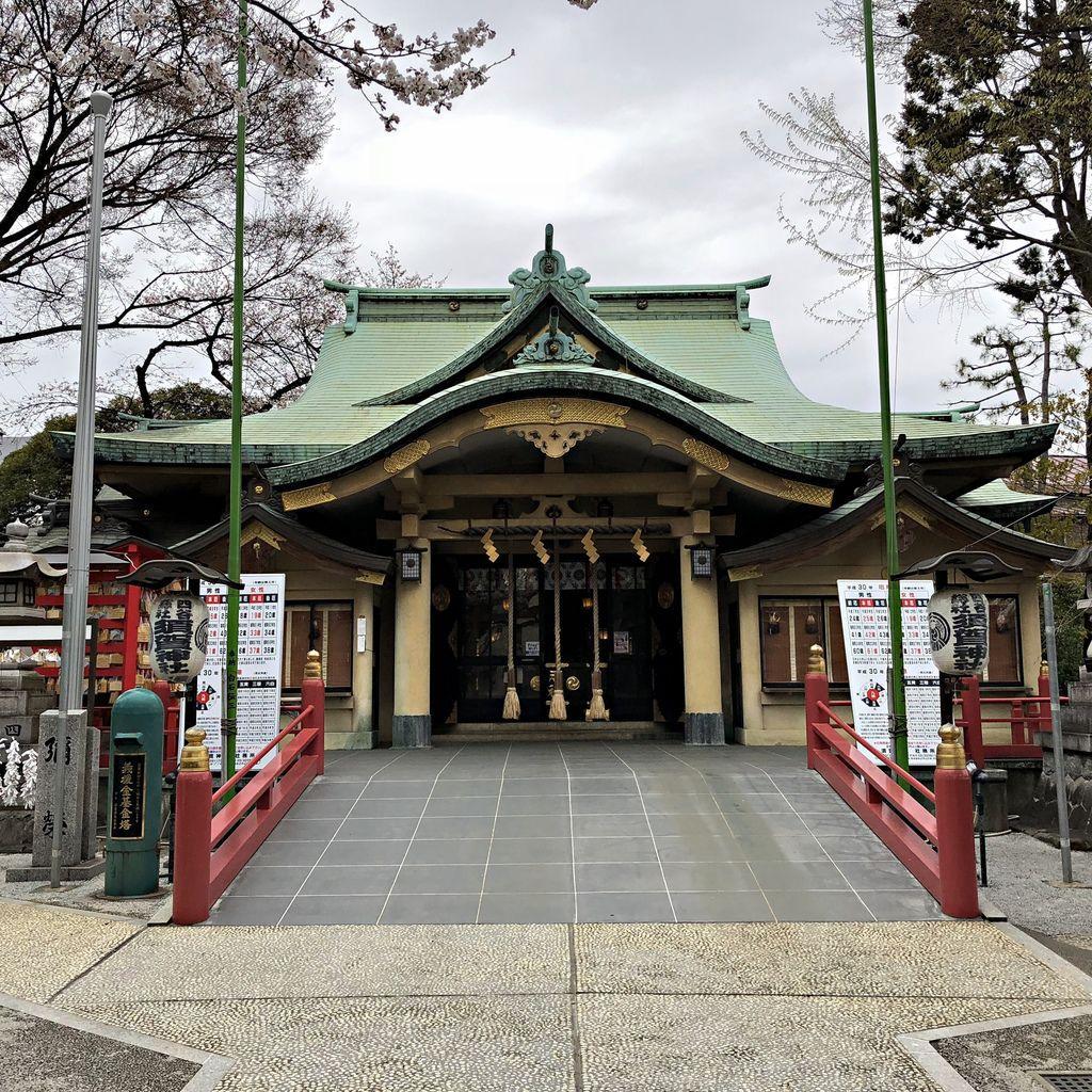 東京櫻花自由行 (14).jpg