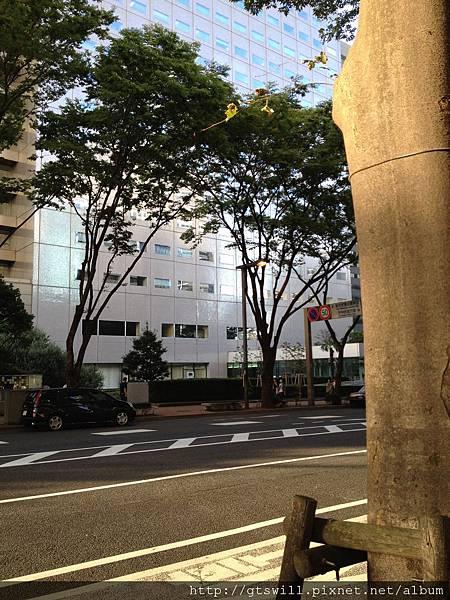 飯店外的街景