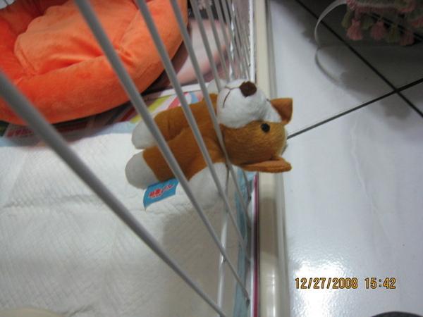 最愛的熊熊玩具