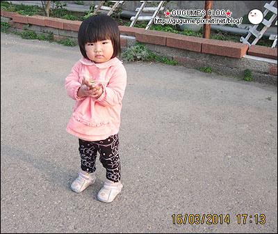 IMG_6804s.jpg